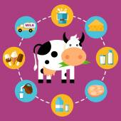 Infographics milk products — Stock Vector