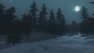 Full moon over the spruce forest in winter — Stockvideo
