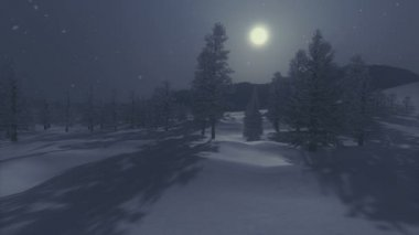 Snowbound spruce forest under full moon — ストックビデオ