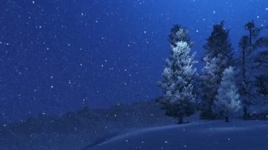 Snow-covered spruces and snowfall at night — Stockvideo