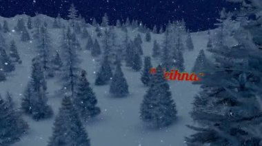 Animated Weihnachten text in the night forest — Stock Video