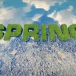 Spring text made from fresh grass among a water stream — Stok video #64510685
