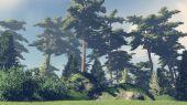 Çam ormanı 4 güneşli bir günde — Stok fotoğraf