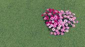 Heart-shaped flower-garden among a green grass 2 — Stock Photo