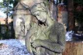 Sculpture from the old Prague Cemetery, Czech Republic — Stockfoto