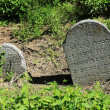 Tombstone on the old village Jewish Cemetery, Czech Republic — Stock Photo #72578295
