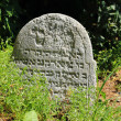 Tombstone on the old village Jewish Cemetery, Czech Republic — Stock Photo #72578405