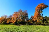 Colorful autumn Landscape in Central Bohemia, Czech Republic — Stock Photo