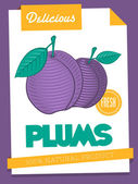 Delicious plums poster — ストックベクタ