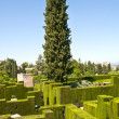 Park Alhambra, Granada, Spain — Stock Photo #57311971