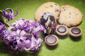 Easter composition hyacinth, cookies, candy and egg — Stock Photo