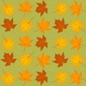 Pattern of autumn leaves — Stock Vector