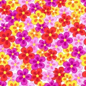 Seamless, pattern  of colorful flowes — Stock Vector