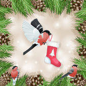 Pine cone with branch and bullfinch with socks — Stock Vector