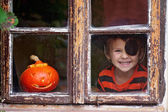 Sweet boy with pumpkin in a costume — Stock Photo