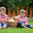 Two adorable boys, sitting on the grass, eating apples — Stock Photo #56212949