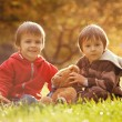 Two cute little boys with teddy bear in the park — Stock Photo #56213157