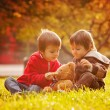 Two cute little boys with teddy bear in the park — Stock Photo #56213209