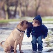 Boy with cute dog, giving him a kiss — Stock Photo #56485711