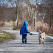 Little boy with his dog in the park, walking and smiling — Stock Photo #56485817