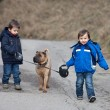 Two Little boys with their dog in the park, walking and smiling — Stock Photo #56485855