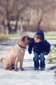 Boy with cute dog, giving him a kiss  — Foto Stock