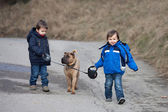 Two Little boys with their dog in the park, walking and smiling  — Stock Photo