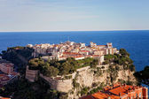 Prince's Palace in Monaco, view from the exotic gardens — Stock Photo