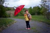 Adorable little boy, holding toy friend and umbrella — Stock Photo