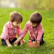 Two boys in the park, having fun with colored eggs for Easter — Stock Photo #65852661