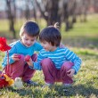 Two boys in the park, having fun with colored eggs for Easter — Stock Photo #66465149
