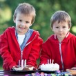 Two adorable boys with cakes, outdoor, celebrating birthday — Stock Photo #66465289