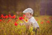Cute kid boy with poppy flower on poppy field on warm summer day — Stock Photo
