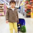 Cute little and proud boy helping with grocery shopping, healthy — Stock Photo #72899783