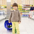 Cute little and proud boy helping with grocery shopping, healthy — Stock Photo #72899793