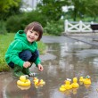 Little boy, jumping in muddy puddles in the park, rubber ducks i — Stock Photo #73748655
