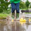 Little boy, jumping in muddy puddles in the park, rubber ducks i — Stock Photo #73748805