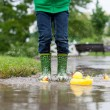 Little boy, jumping in muddy puddles in the park, rubber ducks i — Stock Photo #73748911
