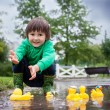 Little boy, jumping in muddy puddles in the park, rubber ducks i — Stock Photo #73748947