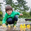 Little boy, jumping in muddy puddles in the park, rubber ducks i — Stock Photo #73748965