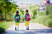 Two adorable boys in colorful clothes and backpacks, walking awa — Stock Photo