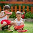 Two boys, eating watermelon in the garden, summertime — Stock Photo #76703845