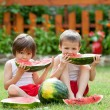 Two boys, eating watermelon in the garden, summertime — Stock Photo #76703853