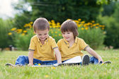 Two little sweet boys, brothers, reading a book in the park — Stock Photo