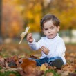 Cute little boy with basket of fruits in the park — Stock Photo #80111352