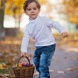 Cute little boy with basket of fruits in the park — Stock Photo #80111366