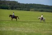 Dva girlds se sází na koně — Stock fotografie