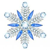 Jewelry in form of snowflake — Stock Vector