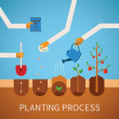 Vector timeline infographic concept of planting process — Stock Vector #59074091