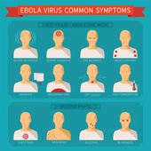 Common ebola virus symptoms vector infographic — Stock Vector